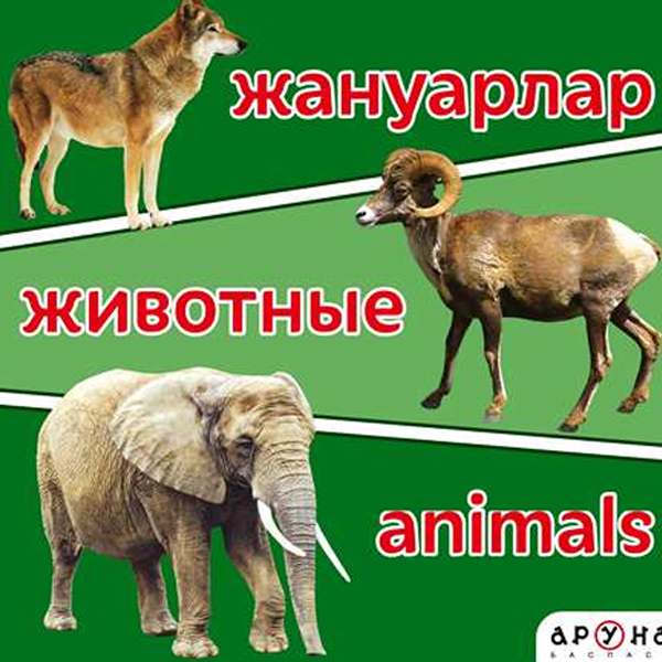 Детская книга Аруна Жануарлар/Животные/Animals