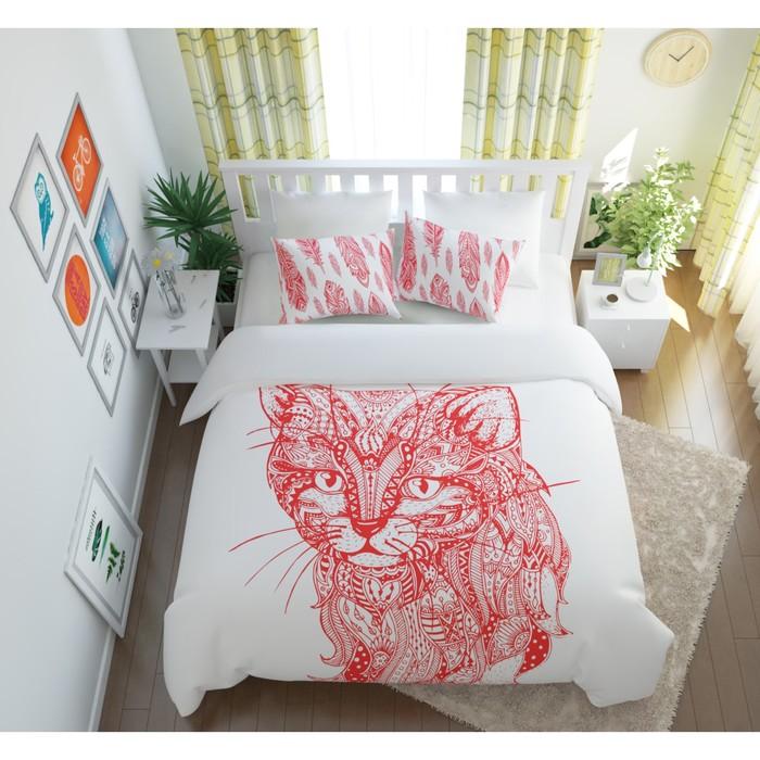 КПБ «Волшебный кот» евро, размер 220× 240 см, 200×220 см, 50×70 см, 70×70 см по 2 шт