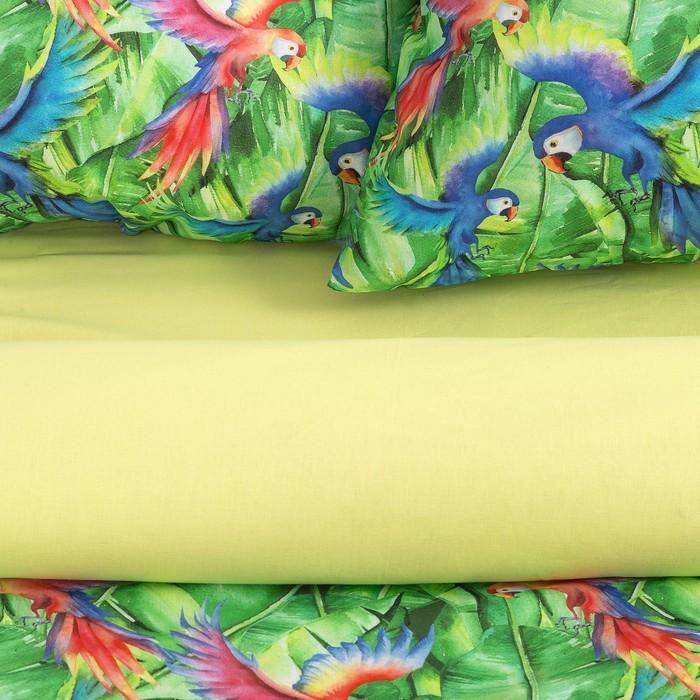 Постельное бельё «Этель» евро Попугаи 200×217 см, 220×240 см, 70×70 см -2 шт, 100% хлопок, поплин 125 г/м²