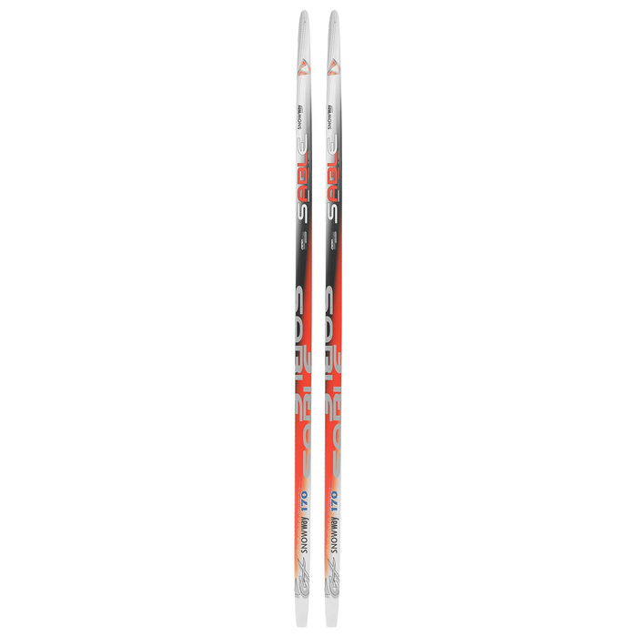 Лыжи пластиковые БРЕНД ЦСТ step, 170 см