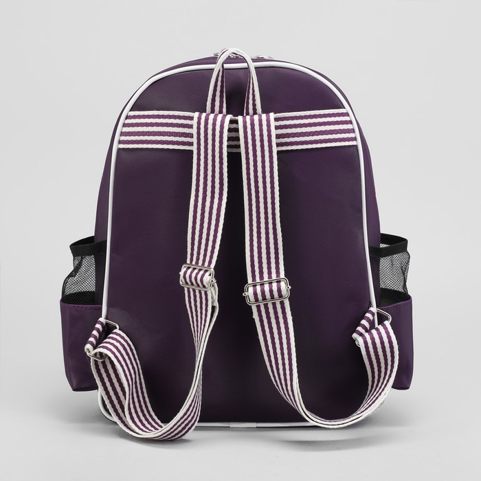 Рюкзак молодёжный, отдел на молнии, 3 наружных кармана, цвет фиолетовый