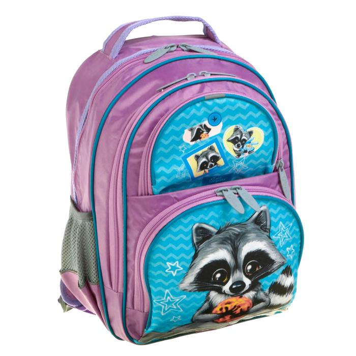Рюкзак школьный с эргономической спинкой Calligrata Пиноккио 36x23x13 см для девочки, «Енот»