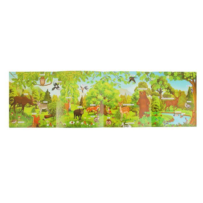 365 слов и картинок «В лесу»
