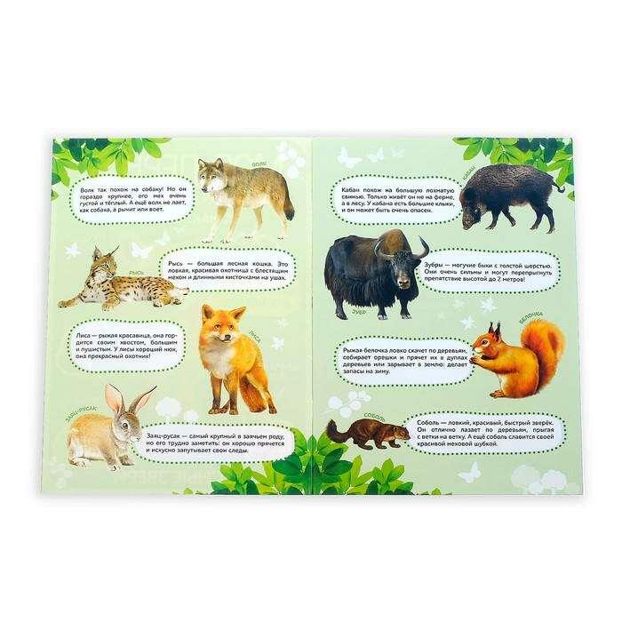 Наклейки «Моя первая энциклопедия. Лесные звери»
