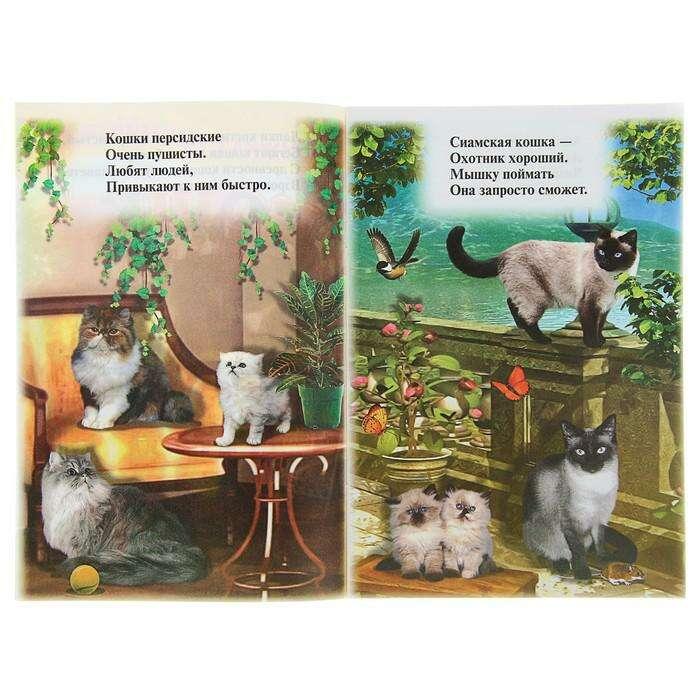 Книжка с наклейками «Кошки», 160 x 240 мм