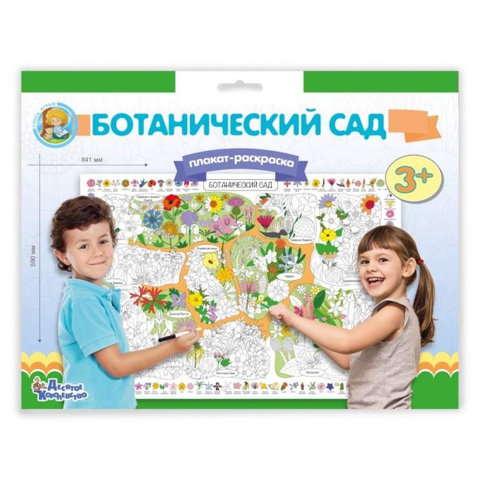 Плакат-раскраска «Ботанический сад»