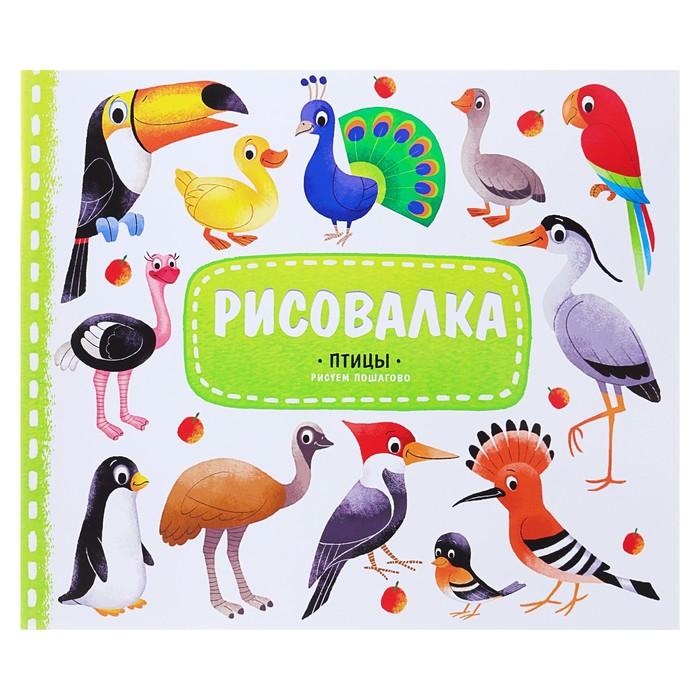 Рисовалка с наклейками «Птицы», 22 x 25.5 см