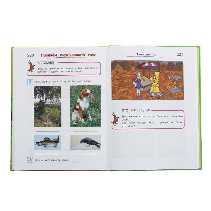 Годовой курс подготовки к школе: для одарённых детей 6-7 лет. Липская Н. М.