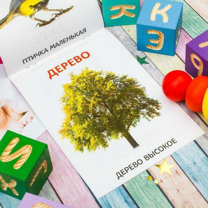 Серия развивающих книг «Мои первые слова. Растем вместе», 20 страниц