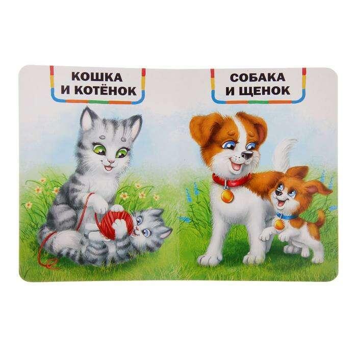 Книги картонные набор «Детские стихи», 6 шт