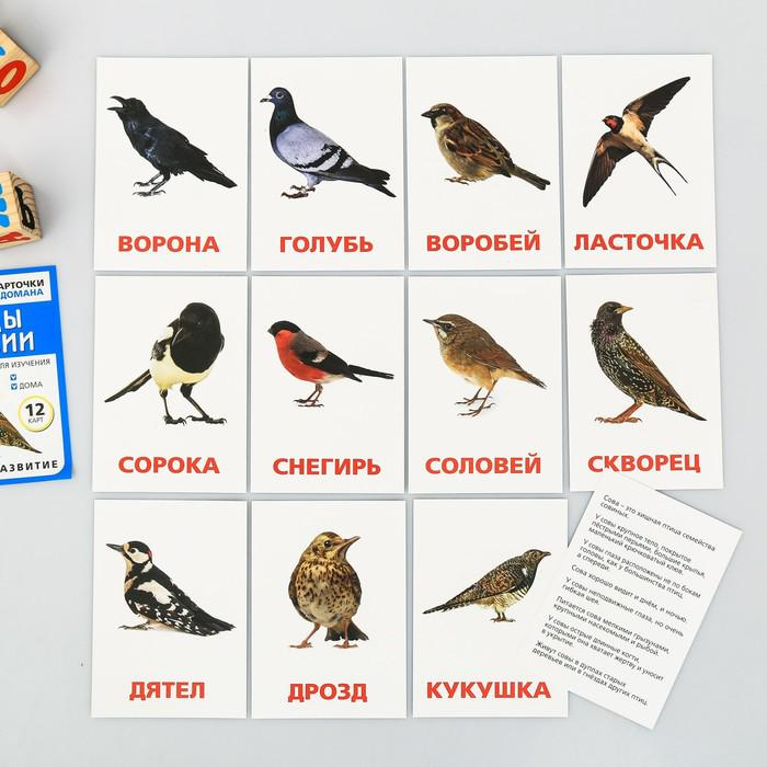 Обучающие карточки по методике Глена Домана, «МИКС №2»
