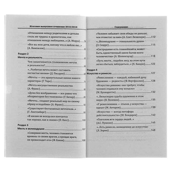 Итоговое выпускное сочинение 2018/2019 г. Амелина Е. В.
