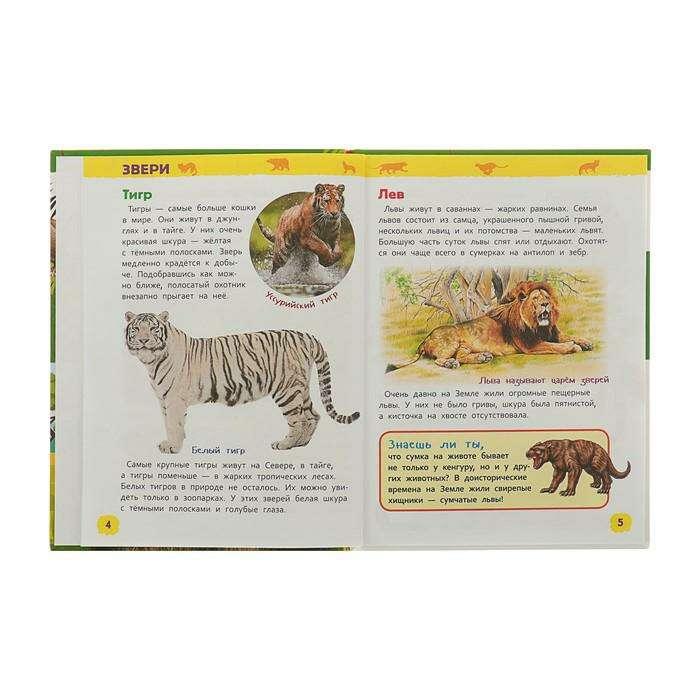 Энциклопедия для детского сада «Хищники»
