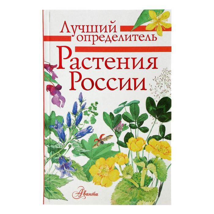 Лучший определитель «Растения России»