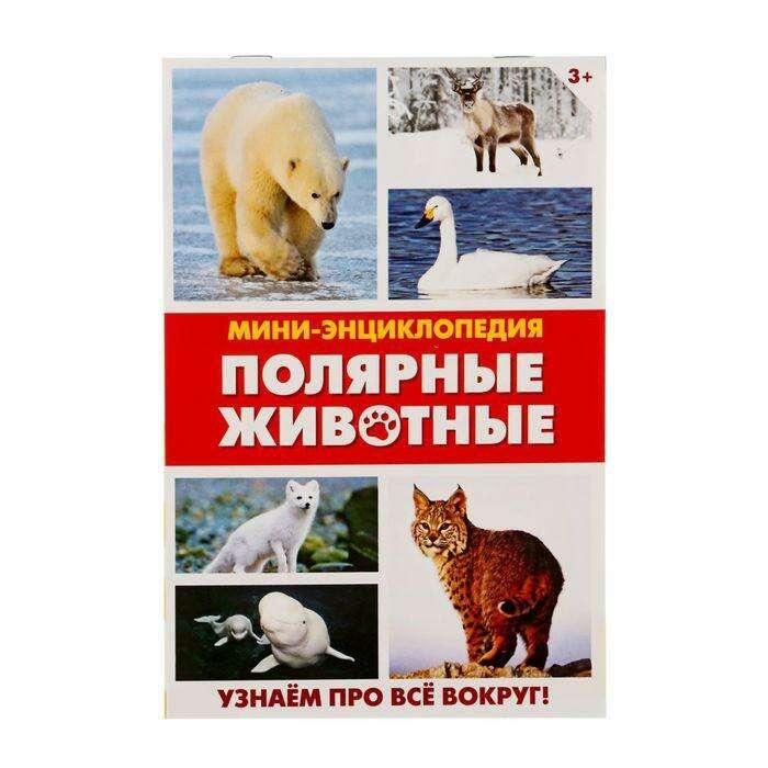Мини-энциклопедия «Полярные животные», 20 стр. «Полярные животные», 20 страниц