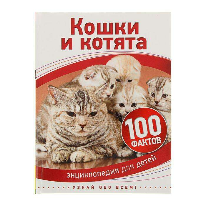 Энциклопедия для детей «Кошки и котята»