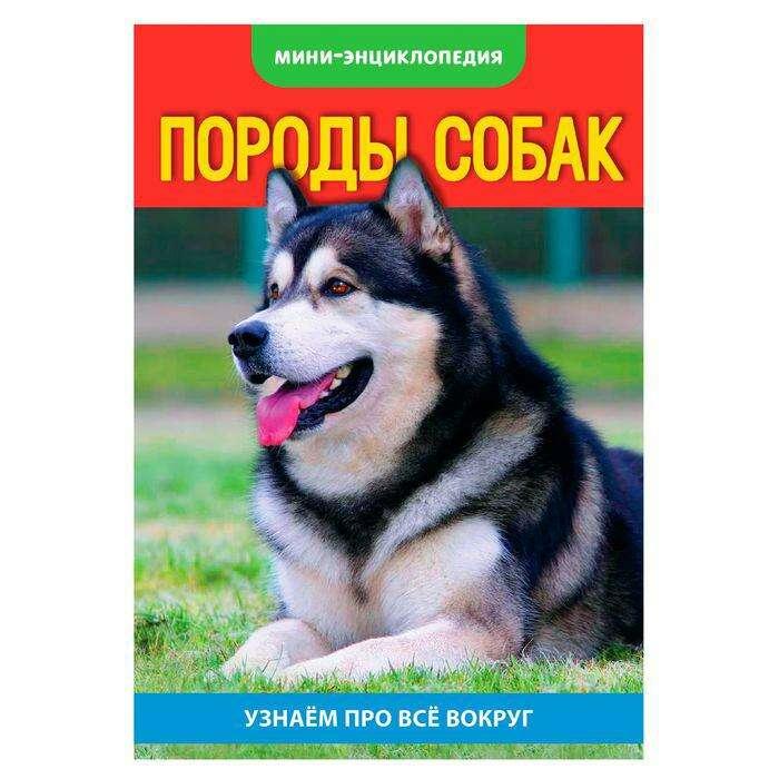 Мини-энциклопедия «Собаки», 20 стр. «Собаки», 20 страниц