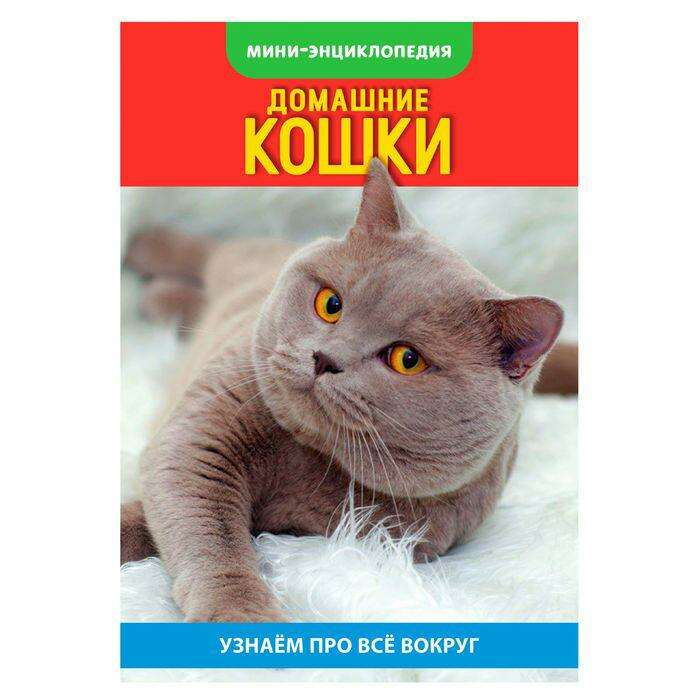 Мини-энциклопедия «Кошки домашние», 20 страниц «Кошки домашние», 20 страниц