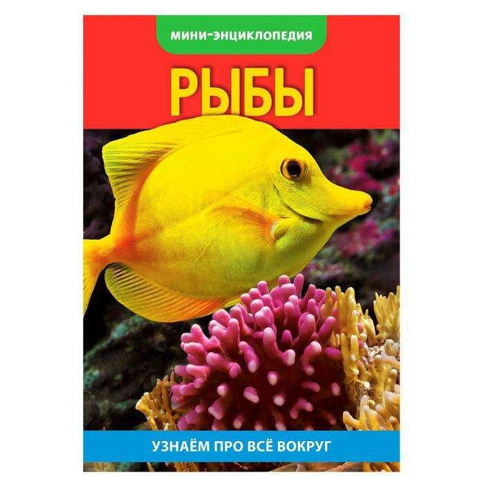Мини-энциклопедия «Рыбы», 20 стр. «Рыбы», 20 страниц