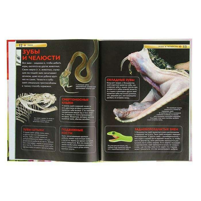 Детская энциклопедия «Змеи»