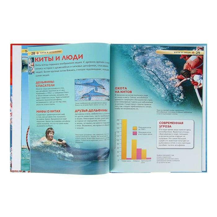 Детская энциклопедия «Киты и дельфины»