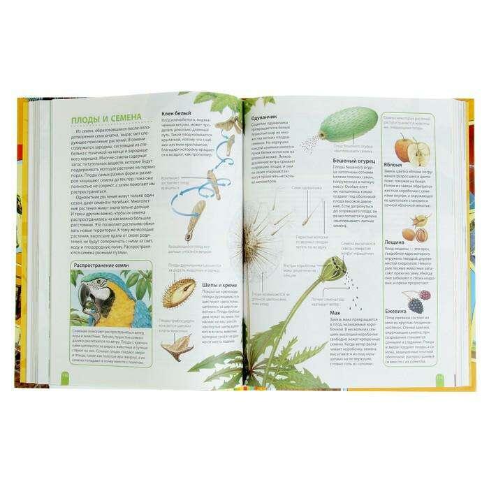 Большая энциклопедия школьника «Как это работает?»