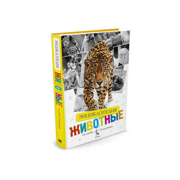Энциклопедия «Животные. От амёбы до шимпанзе»
