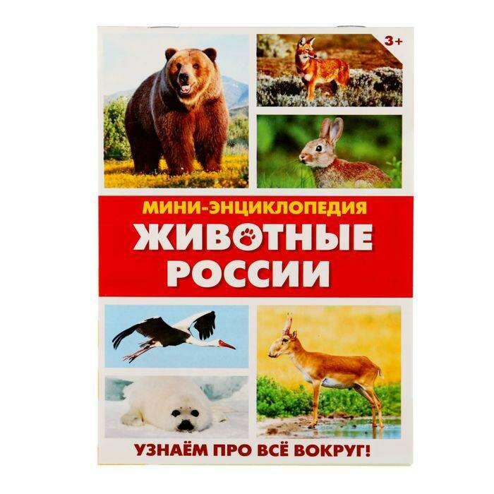 Мини-энциклопедия «Животные России», 20 стр. «Животные России», 20 страниц