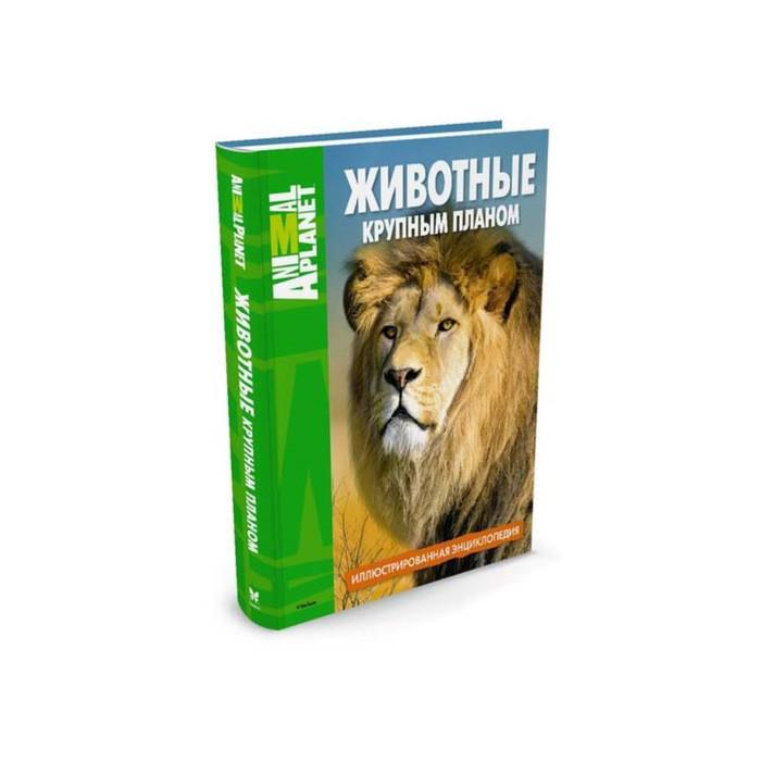 Иллюстрированная энциклопедия «Животные крупным планом»