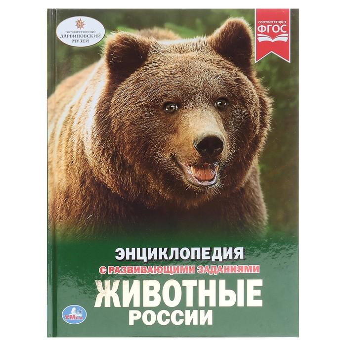 Энциклопедия с развивающими заданиями «Животные России»