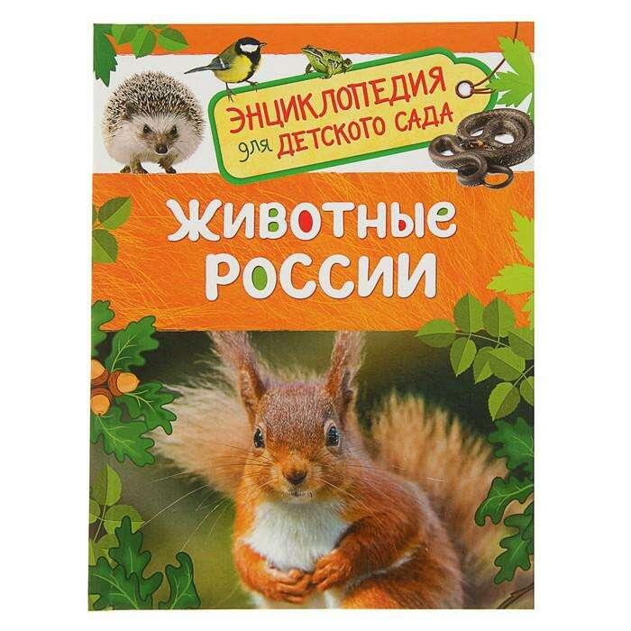 Энциклопедия для детского сада «Животные России»