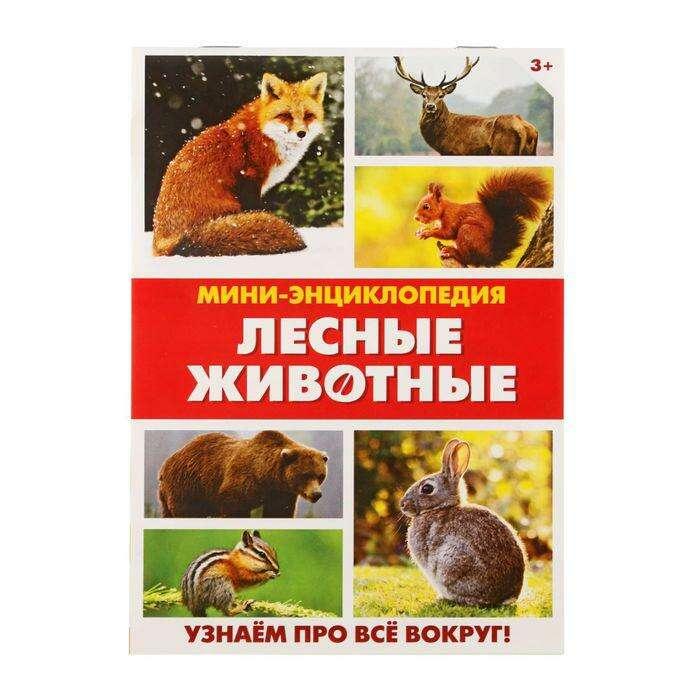 Мини-энциклопедия «Лесные животные», 20 стр. «Лесные животные», 20 страниц