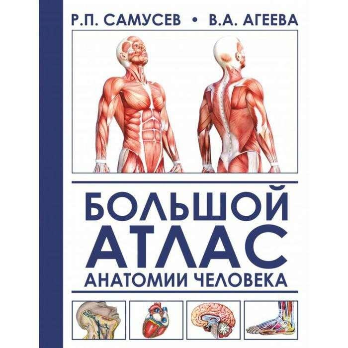Большой атлас анатомии человека. Самусев Р. П., Агеева В. А.