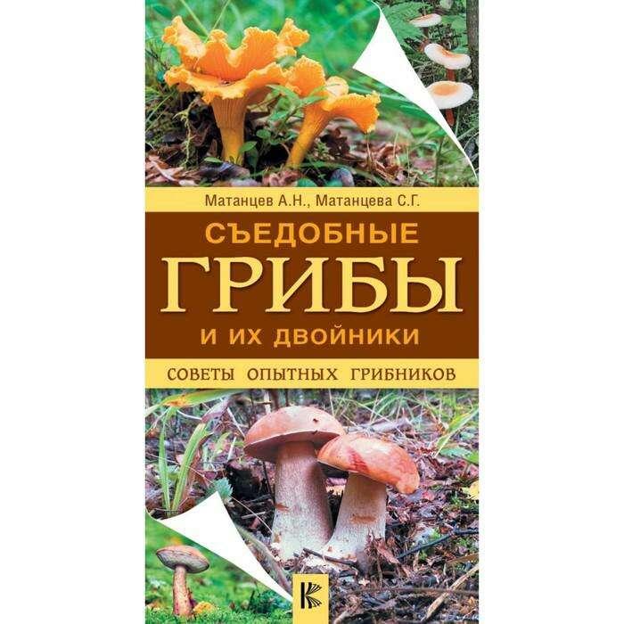 Съедобные грибы и их двойники. Советы опытных грибников Советы опытных грибников
