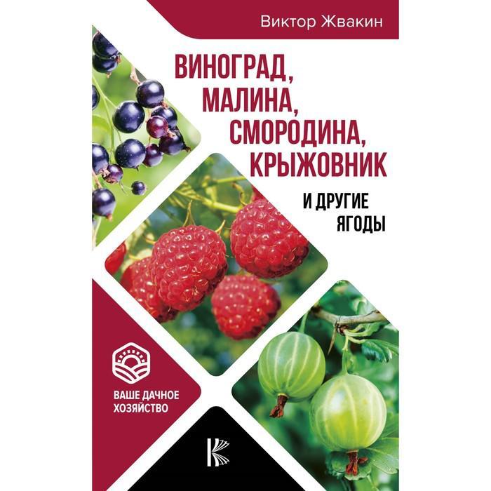 Виноград, малина, смородина, крыжовник и другие ягоды. Жвакин В. В.