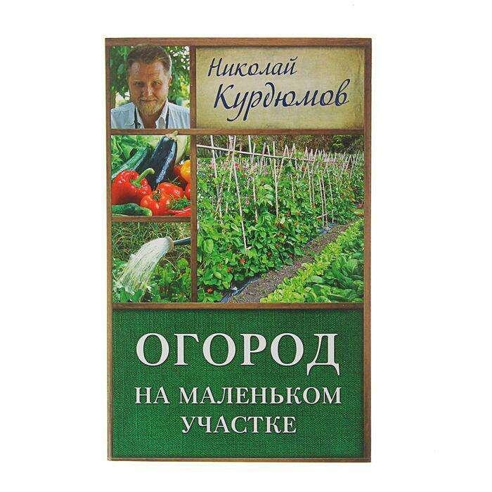 Огород на маленьком участке. Курдюмов Н. И.