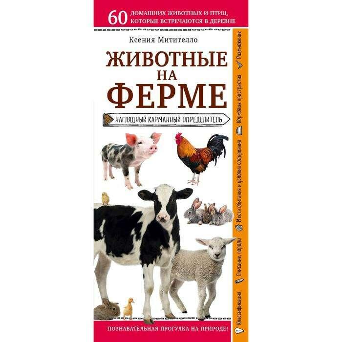 Животные на ферме. Наглядный карманный определитель. Митителло К. Б.