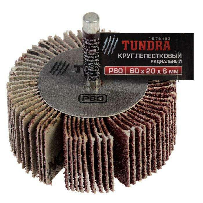 Круг лепестковый радиальный TUNDRA basic, 60 х 20 х 6 мм, P60