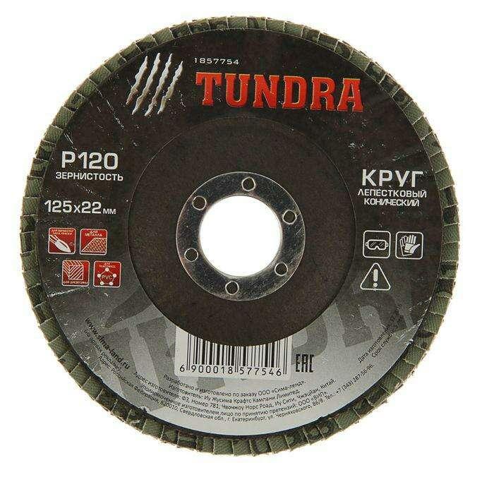 Круг лепестковый торцевой конический TUNDRA basic, 125 х 22 мм, Р120