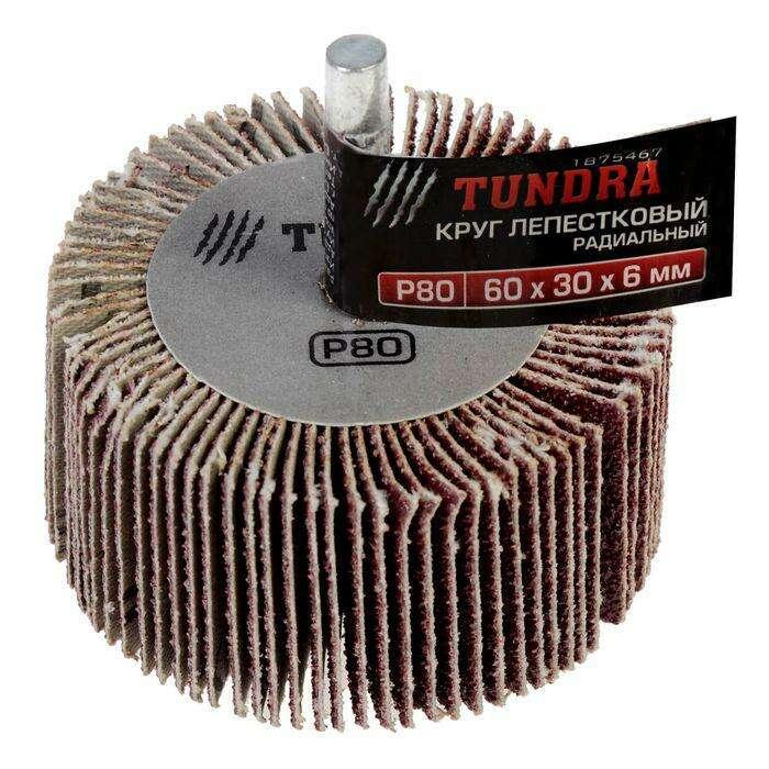 Круг лепестковый радиальный TUNDRA basic, 60 х 30 х 6 мм, P80