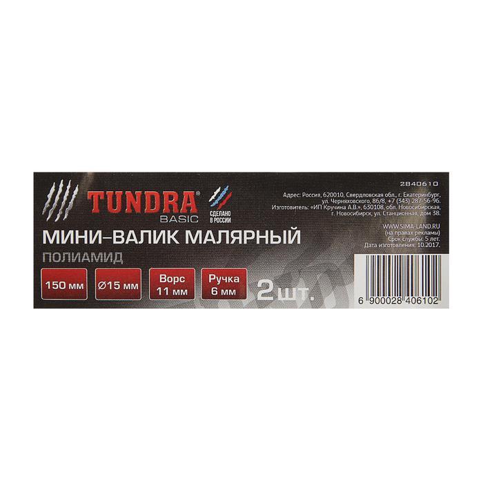 Мини-валик сменный TUNDRA basic, полиамид, 150 мм, ручка d=6 мм, D=15 мм, ворс 11 мм, 2 шт.   284061