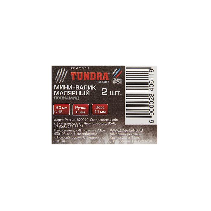 Мини-валик сменный TUNDRA basic, полиамид, 60 мм, ручка d=6 мм, D=15 мм, ворс 11 мм, 2 шт.