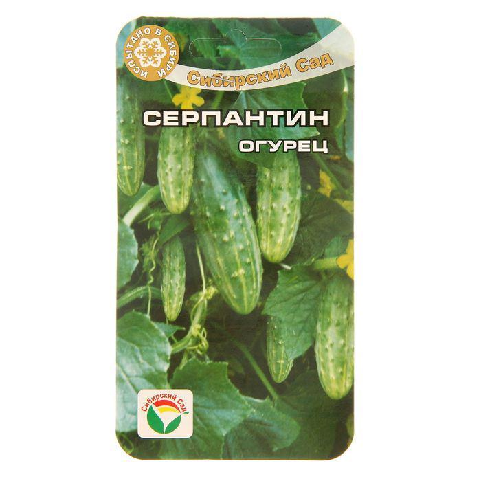 Семена Огурец Серпантин, пчелоопыляемый,15 шт