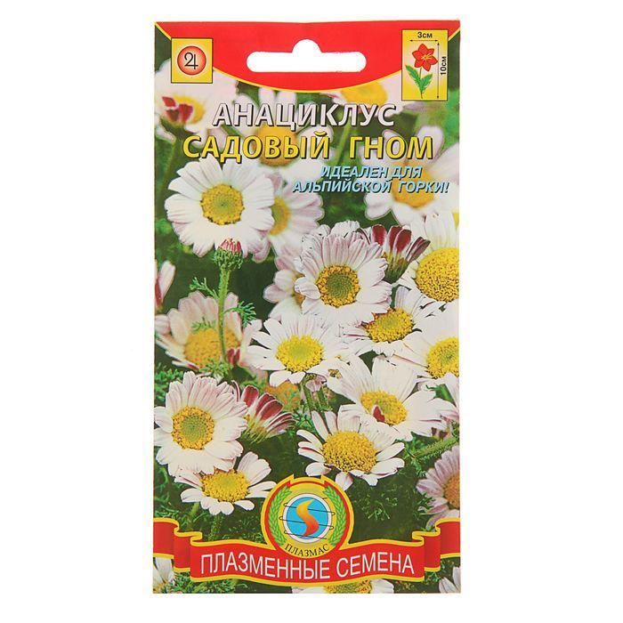 """Семена цветов Анациклус """"Садовый гном"""", Мн., 0,015 г"""