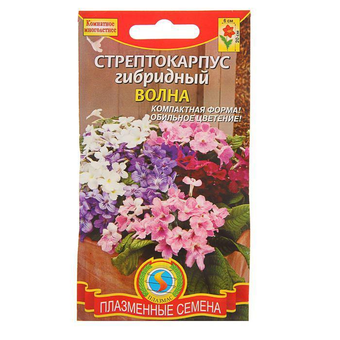 """Семена комнатных цветов Стрептокарпус, гибридный, """"Волна"""", Мн., смесь, драже 5 шт."""