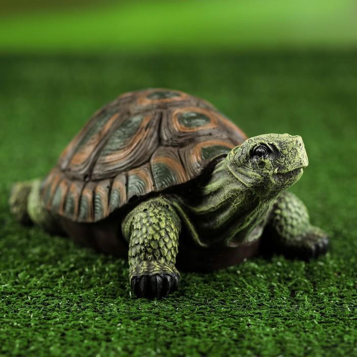 """Садовая фигура """"Черепаха"""" малая, 11 х 18 х 24 см"""