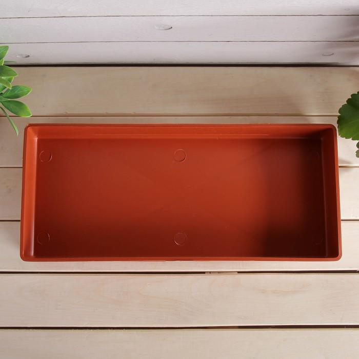 Ящик для рассады, 40 × 17,5 × 5 см, цвет МИКС, «Профи»