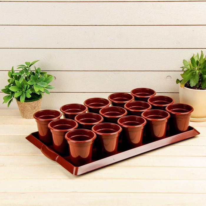 Набор для рассады: стаканы по 300 мл (15 шт.), поддон 47 × 30 см, МИКС