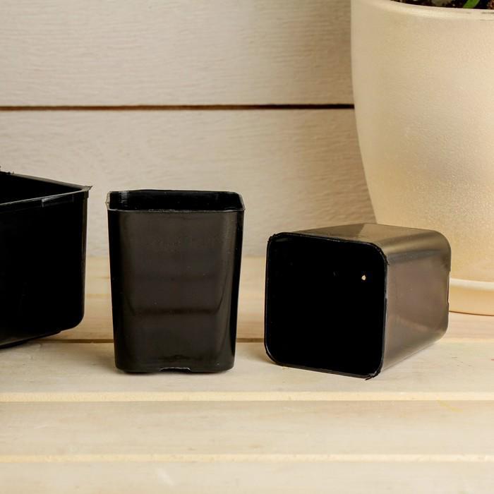 Набор для рассады: стаканы по 70 мл (24 шт.), поддон 30 × 20 см