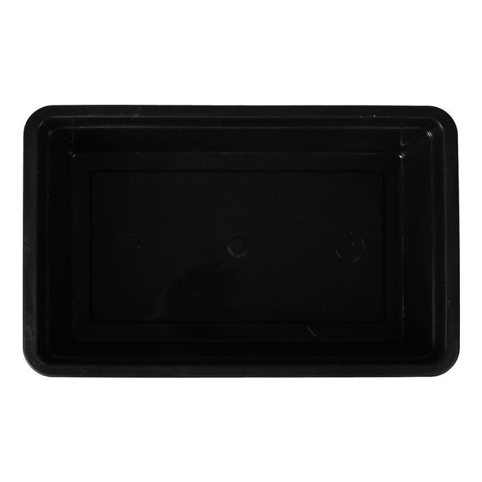 Ящик для рассады, 40 × 25 × 10 см, чёрный, 6 л, «Урожай-4»
